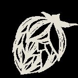 http://baycitybrewingco.com.review.mindgruve.com/wp-content/uploads/2019/02/hop-flower-160x160.png